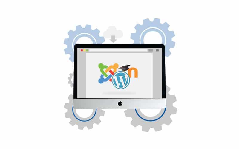 Enterprise CMS Development Services